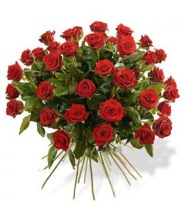 Grande Rose Gros Bouton
